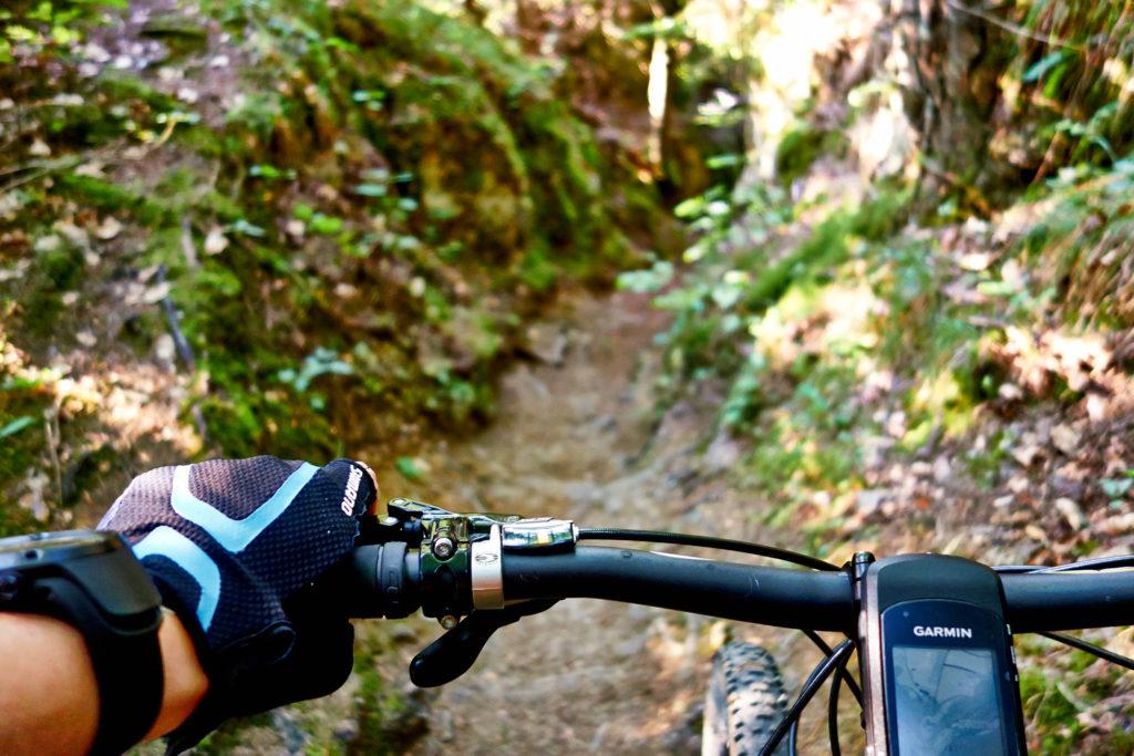 Mit dem Mountain Bike über einen der unzähligen Trails der Fränkischen Schweiz